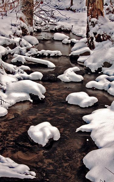Vinterbäck