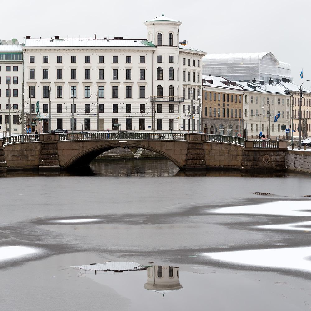 stor fnask avsugning i Göteborg
