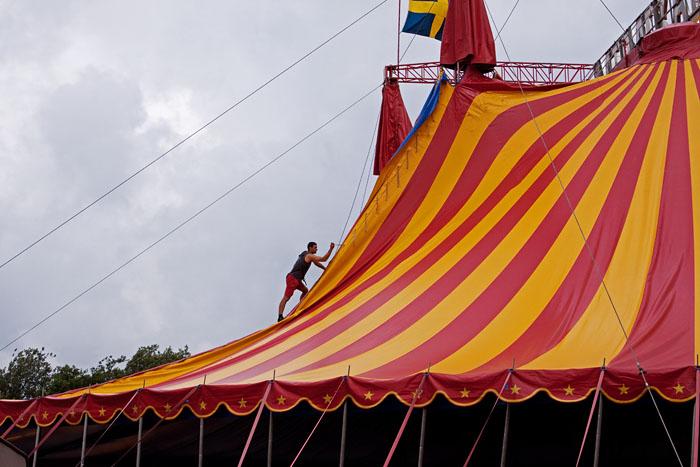 Cirkustält
